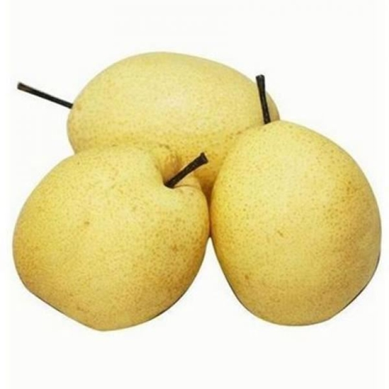 Picture of Fresh Snow Pear /EA
