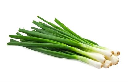 Picture of Small Scallion/Pack