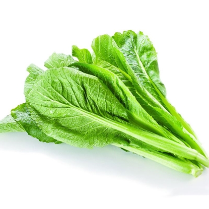 Picture of Mustard Green Leaf