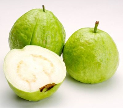 Picture of Guava /EA