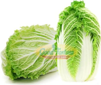 Picture of Napa Cabbage