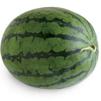 Picture of Watermelon /EA