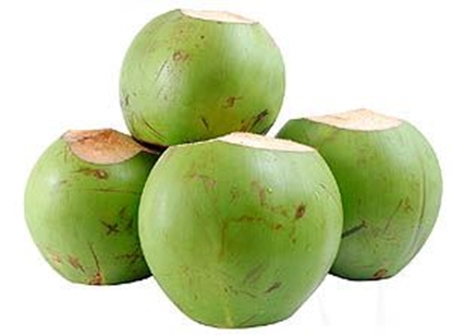 Picture of Fresh Coconut /EA