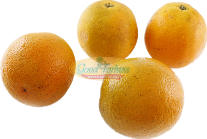 Picture of Florida Orange 小佛州橙 /5pcs