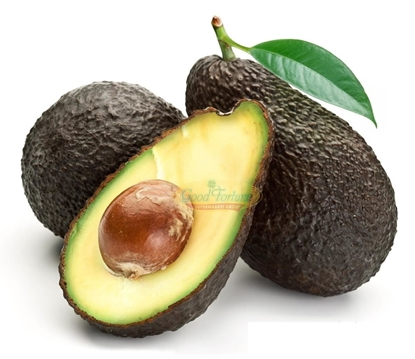 Picture of Avocado /EA