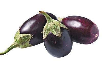 Picture of Thailand eggplant/lb