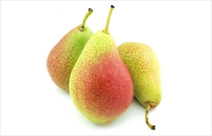 Picture of Japanese Pear /EA