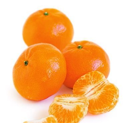 Picture of Small Sweet tangerine /lb