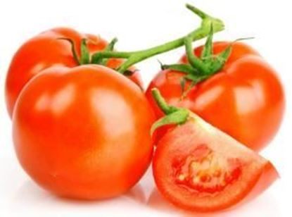 Picture of Vine tomato/LB