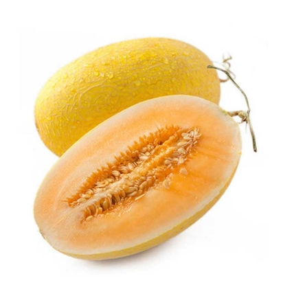 Picture of Cantaloupe /EA