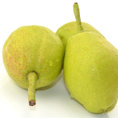 Picture of Xinjiang Pear /3pcs