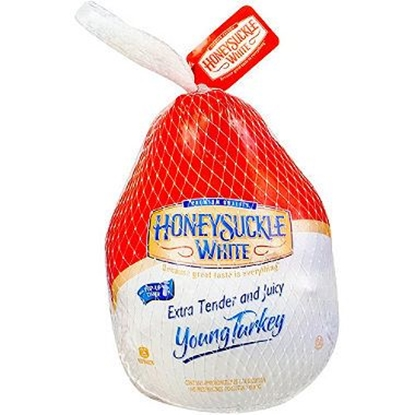 Picture of Honey Suckie white turkey/只