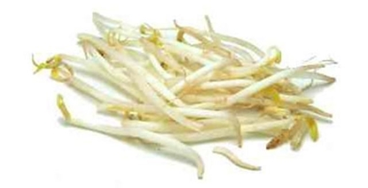 Picture of Bean Sprouts