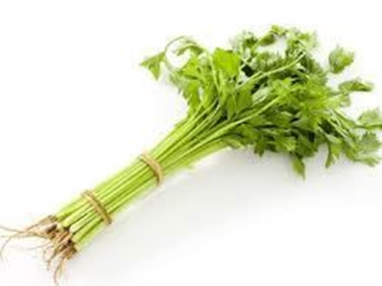 Picture of Chinese Celery