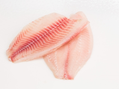 Picture of Fresh Tilapia Fillet