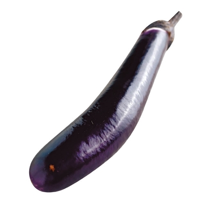 Picture of Chinese Eggplant